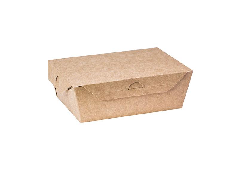 Упаковка Ланч-Бокс (замок-крючок)