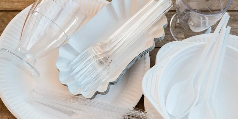 Чем могут заменить в будущем одноразовую пластиковую посуду?