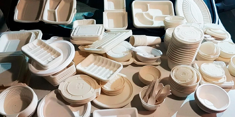 Для кого актуальна биоразлагаемая посуда